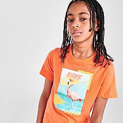 Boys' Nike Flamingo Air Photo T-Shirt