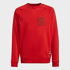 Kids' adidas FC Bayern Soccer Crewneck Sweatshirt